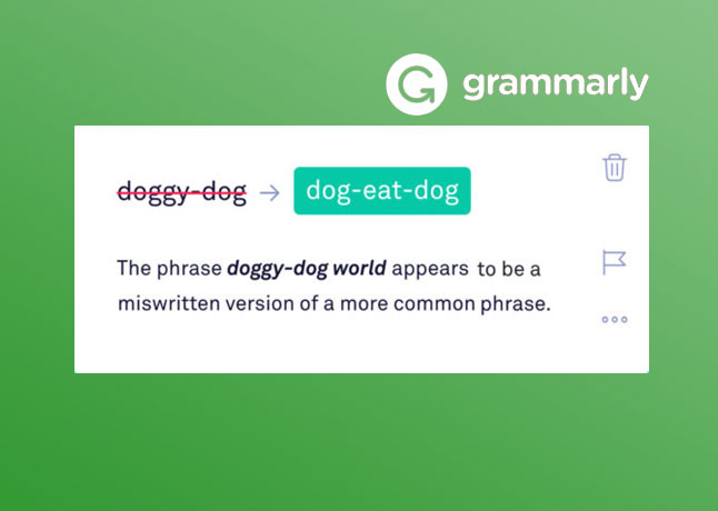 Grammarly Introduces a New Feature Named Expert Writing Help