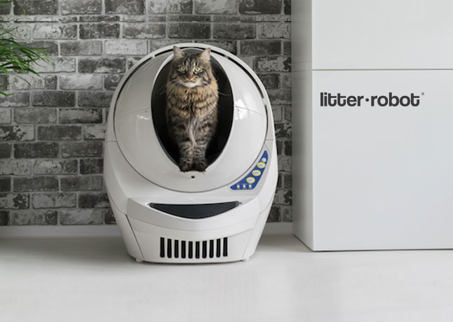 Enjoy Pet Parenting with Self-Cleaning Cat Toilet Litter-Robot