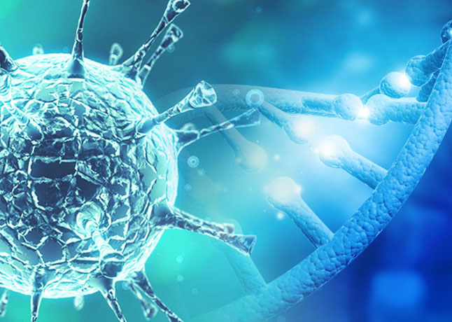 A New Research Suggests Mutation Makes Coronavirus More Infectious