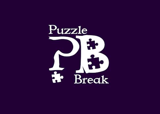 Puzzle Break: Rekindling Childhood Passion To Fuel Success